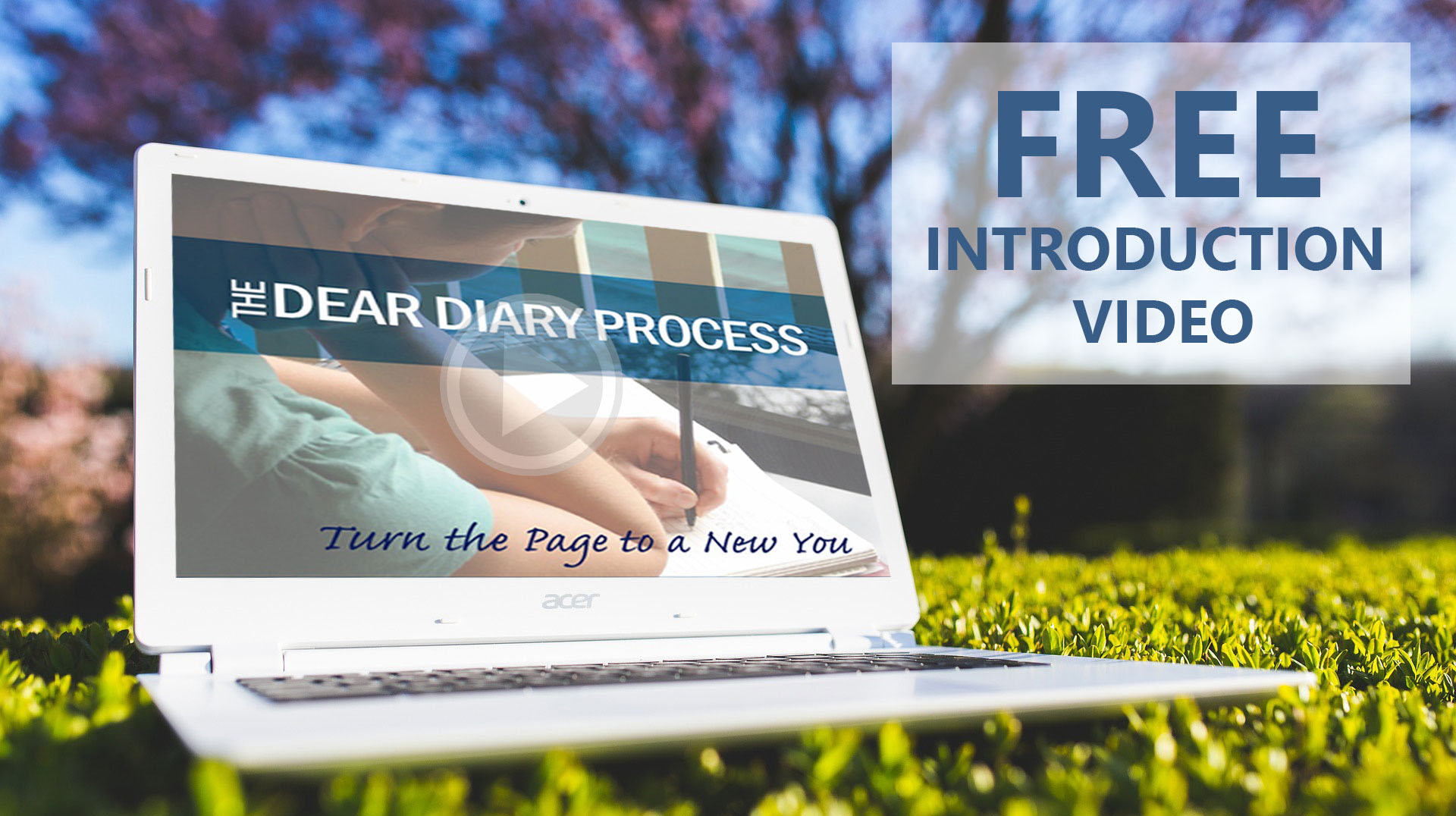 The dear diary process amazing process transforming your life fill in your details here to gain access to the introduction video explaining the dear diary process fandeluxe Choice Image